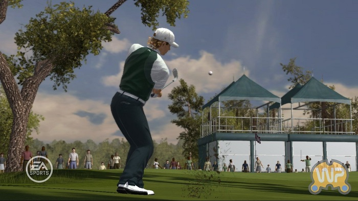 Постер к Русификатор Tiger Woods PGA TOUR 08 (текст)